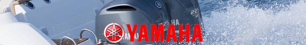 Yamaha display 2